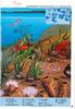 Images doc 67 de 07.1994_Pourquoi la mer monte et descend ? - URL