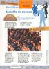 Dauphin 6 du 15.11.2013_Souffler sur une lamelle de roseau - URL
