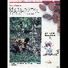 Wakou 11 du 1990.02_Les cabosses, les fèves de chocolat, le chocolat - URL